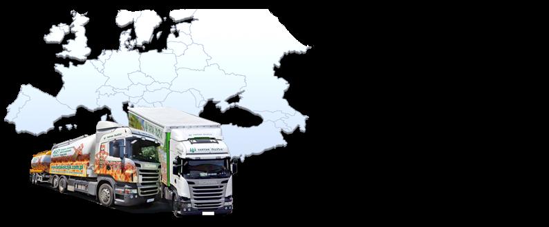 Posiadamy własną flotę pojazdów ciężarowych gotowych do transportu pelletu w najdalsze zakątki Europy. Realizujemy zamówienia w trybie pilnym i gwarantujemy terminowość dostaw!